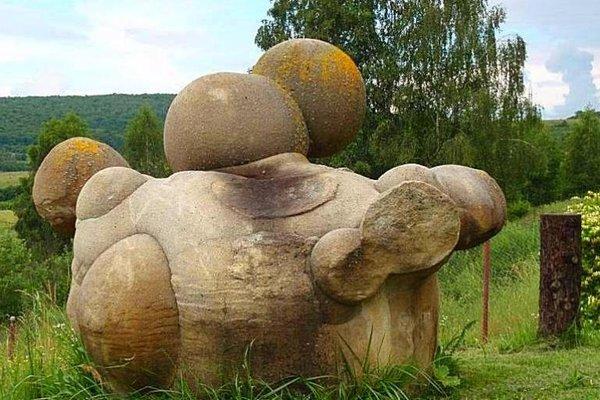Трованты - живые камни, которые растут и размножаются