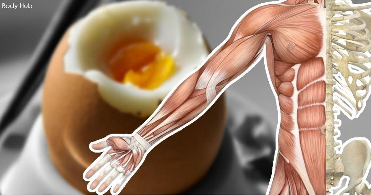 13 чудесных вещей, которые произойдут с вашим телом, если вы каждый день будете есть яйца