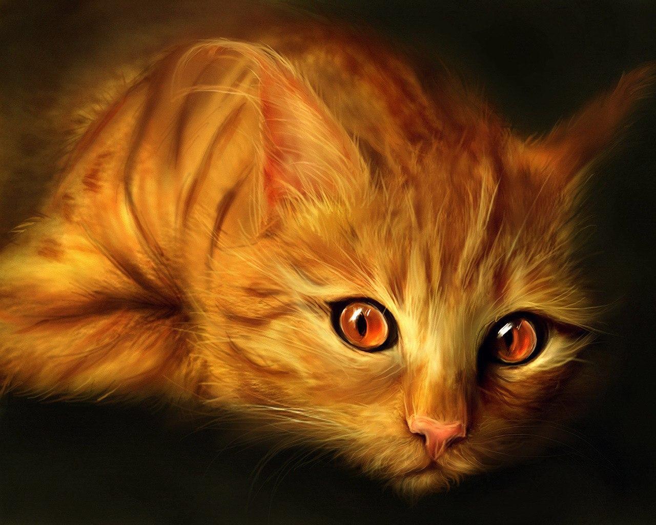 Кошачий ангел