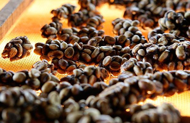Как производят самый необычный кофе в мире