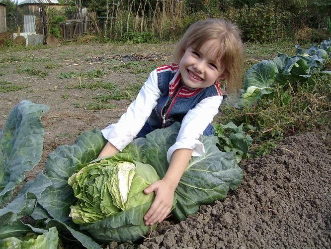 Огород для малыша