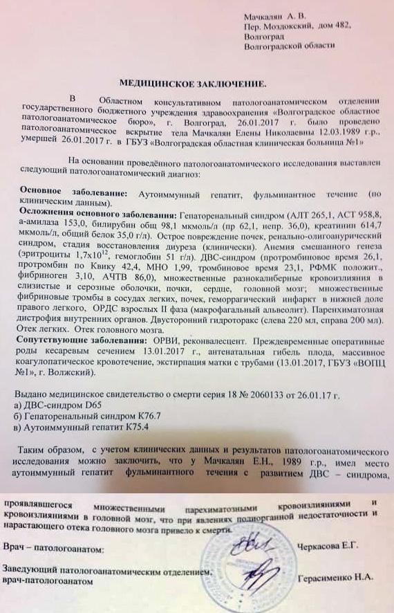 Первая версия врачебного заключения о смерти Елены Мачкалян