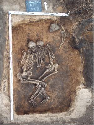 Бубонная чума могла существовать еще в бронзовом веке