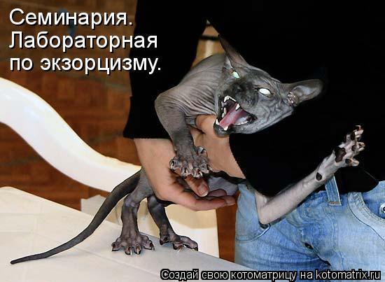 http://mtdata.ru/u25/photoD752/20476089455-0/original.jpg#20476089455
