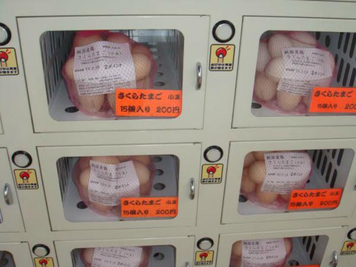 Ассортимент торговых автоматов.