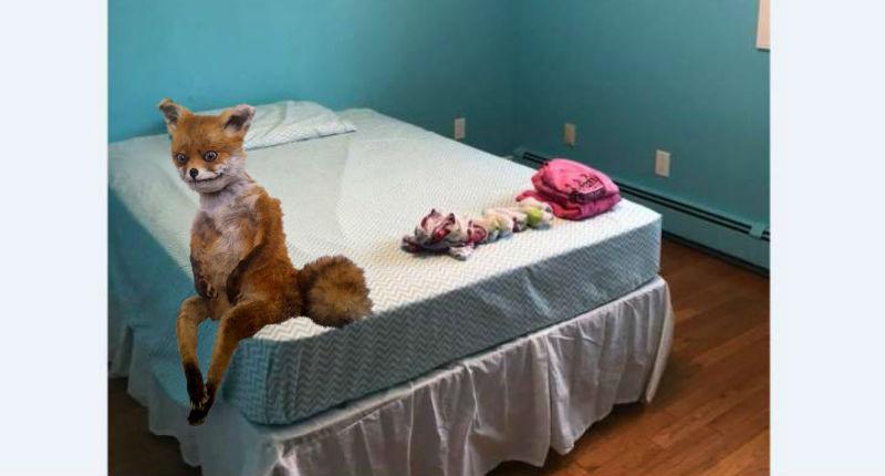 «Добро пожаловать в колонию для несовершеннолетних»: в наказание мать превратила комнату дочери в тюремную камеру