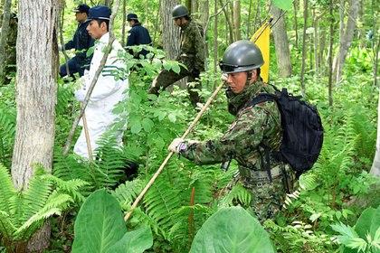 В Японии брошенный в лесу ре…
