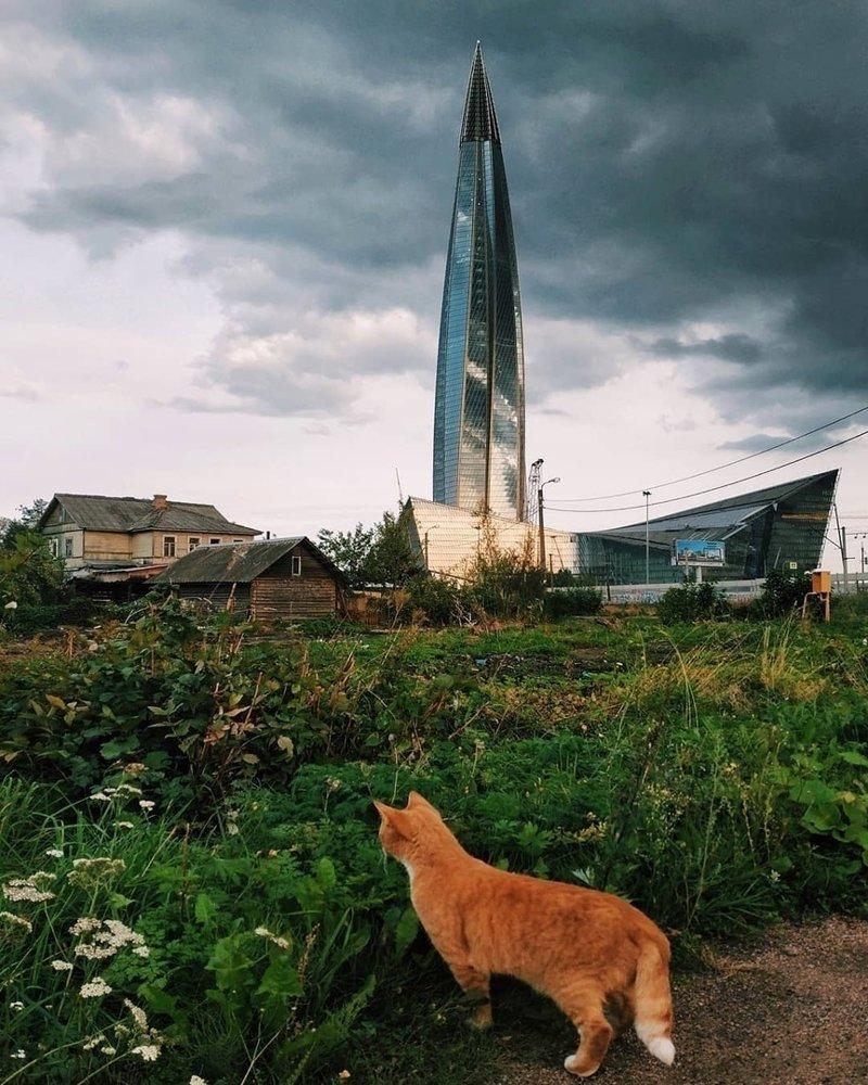 Природа в России соседствует с технологиями так близко, что граница почти ощутима авто, бедность, богатство, контрасты, россия, фото, юмор