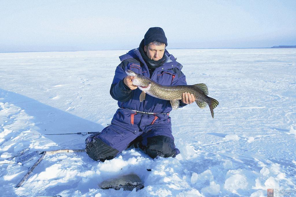 Рыбалка на озерах в ханты мансийске