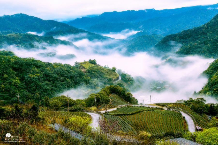 Замечательные фотографии природы Виви Лиу