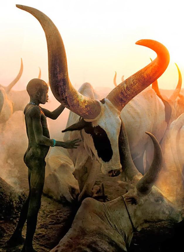 Динка – удивительная нилотская этническая группа из Судана