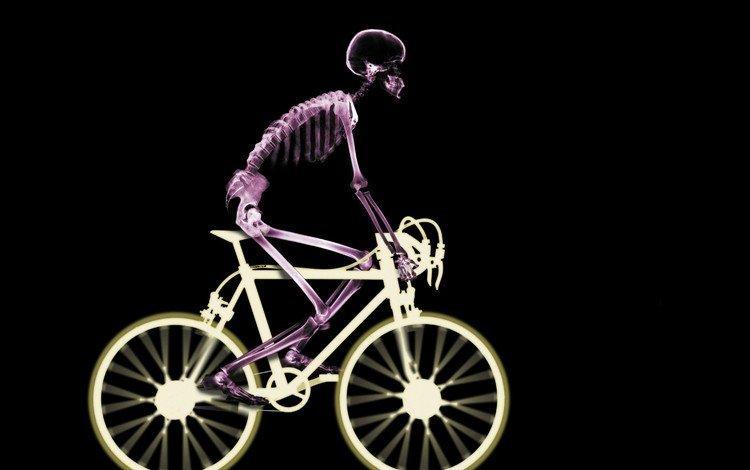 Велосипедист — бедствие для экономики автомобили
