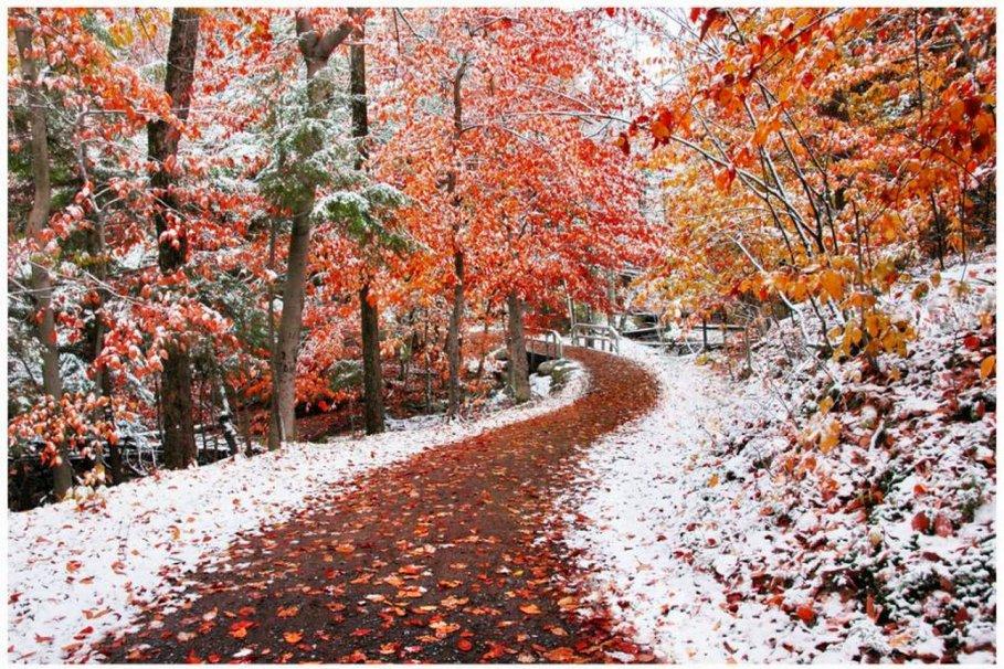 Картинки ноябрь для детей, фотошопу открытки день