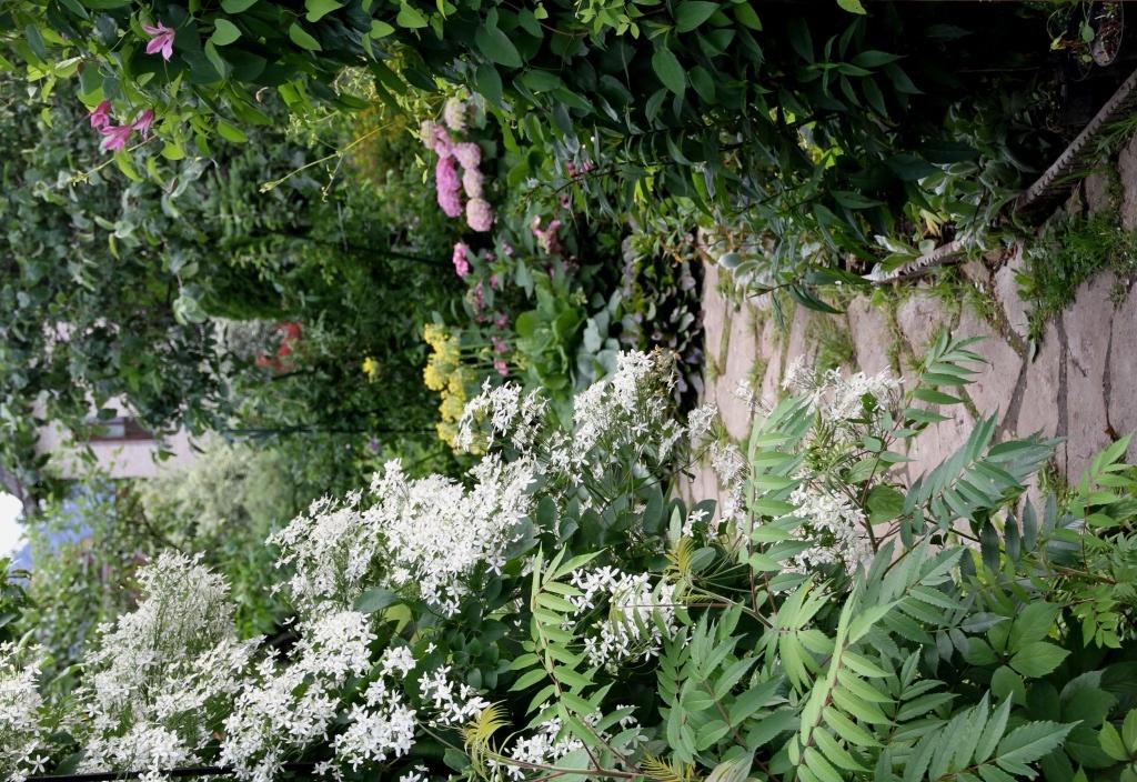 дизайнерский сад марины соколовой фото белых