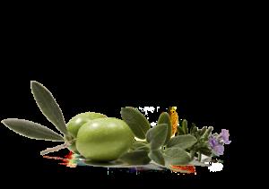 Кондиционер из оливкового масла в домашних условиях.