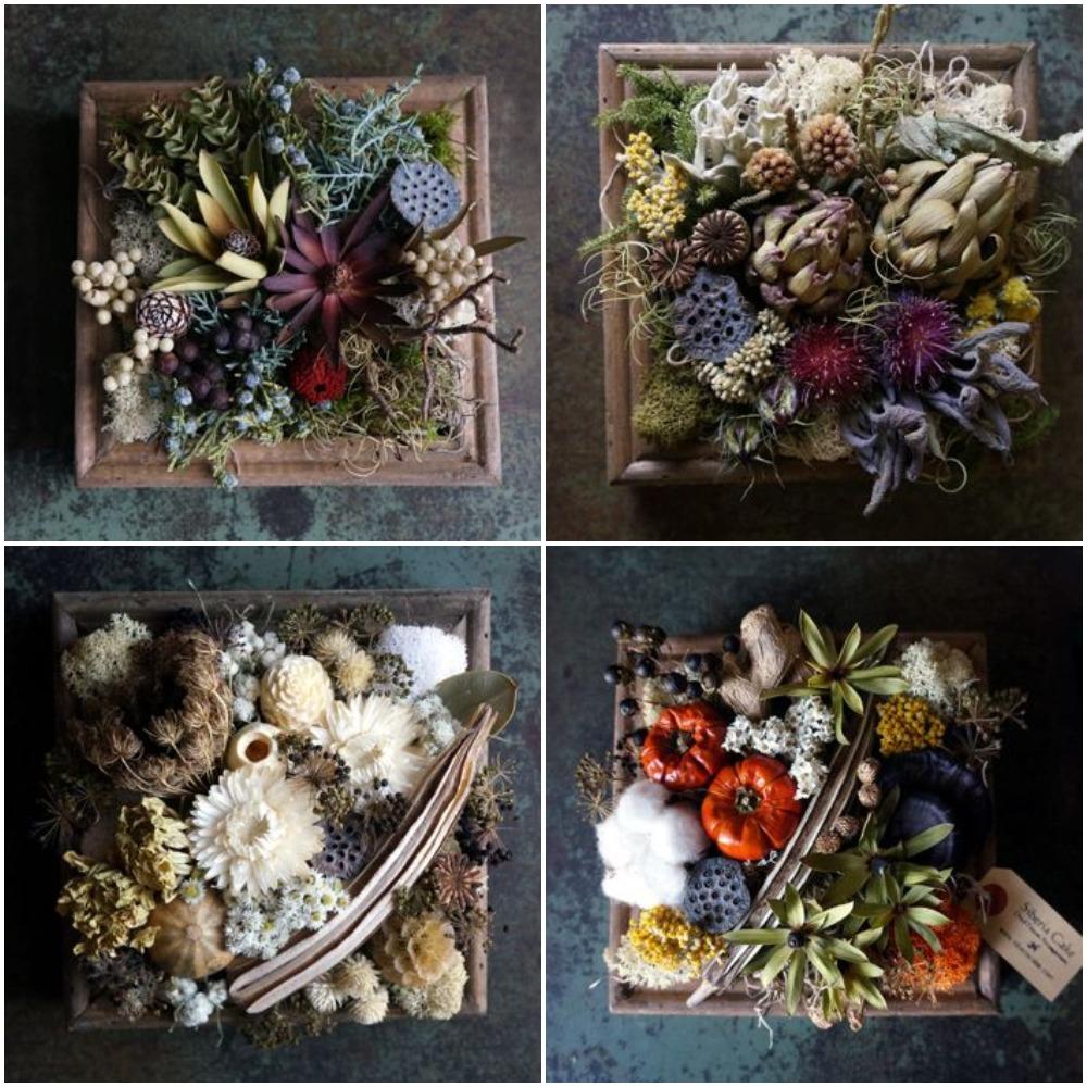 картинки коллажи сухоцветы миром, подписал