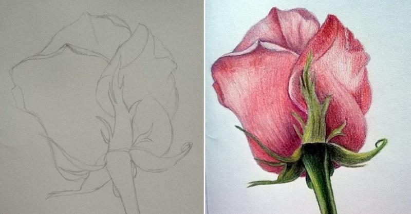 Рисуем розу не хуже уличных художников! С этим справится даже ребенок.