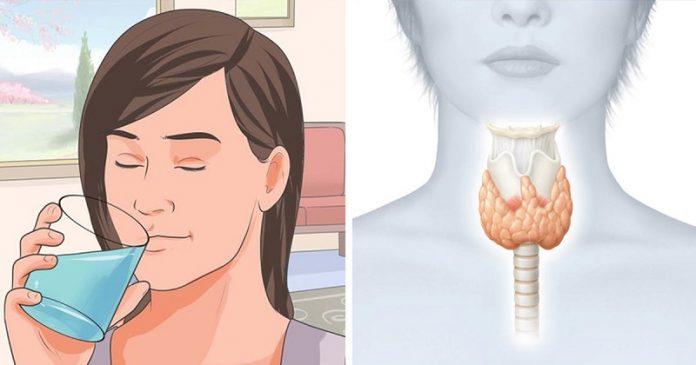 Как «перезапустить» щитовидную железу, чтобы сжигать жир и активировать метаболизм