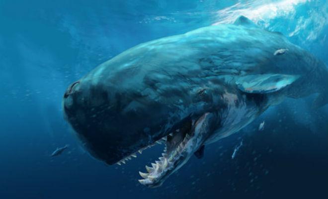 Левиафан: подводный охотник на мегалодона