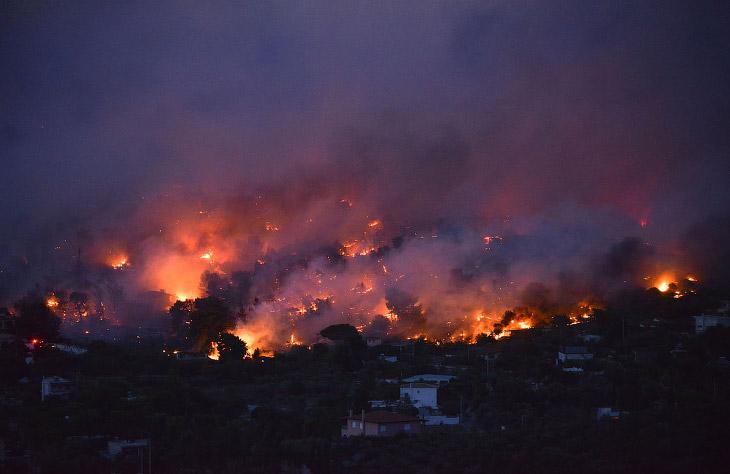 Лесной пожар уничтожает город Рафина недалеко от Афин