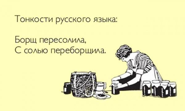 ЯЗЫК МОЙ. Интересные факты о русском языке