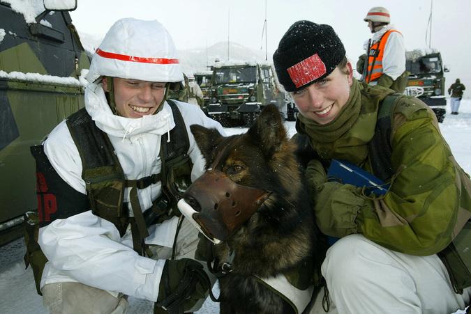 В казармах норвежской армии мужчины теперь спят вместе с женщинами