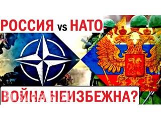 Ястреб против Медведя: НАТО готовится к гибридной войне у границ России