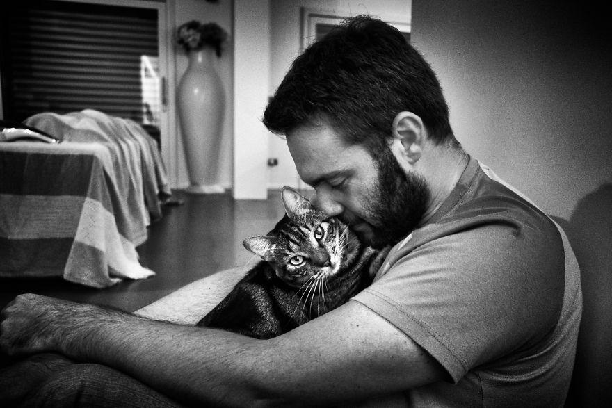 Мужчины и кошки фото