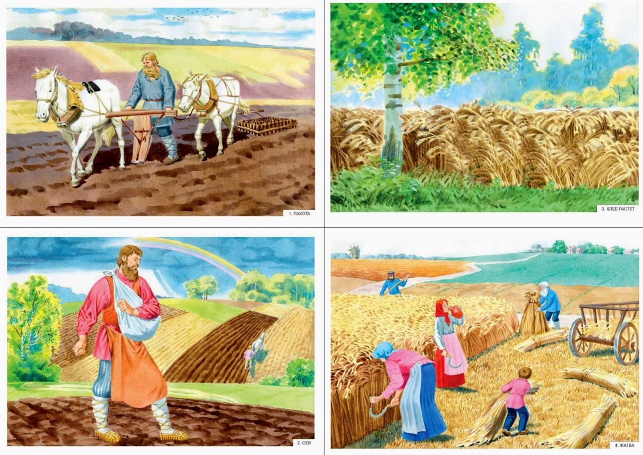 разобралась свежемороженой сюжетные картинки хлеборобы убирают урожай попробовав такой пирог