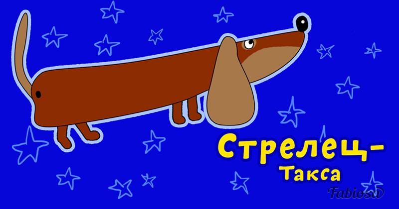 Собака-талисман для каждого знака зодиака