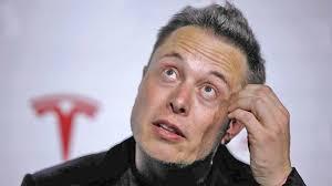 Гость усадьбы главы Теслы: Маск плотно сидит на галлюциногенах