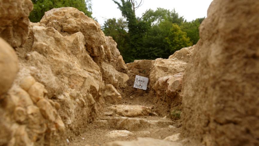 Останки немецких и советских солдат времен ВОВ раскопали под Ростовом Общество