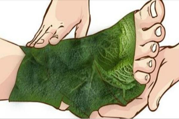 Удивительные результаты от обертывания ног листом капусты