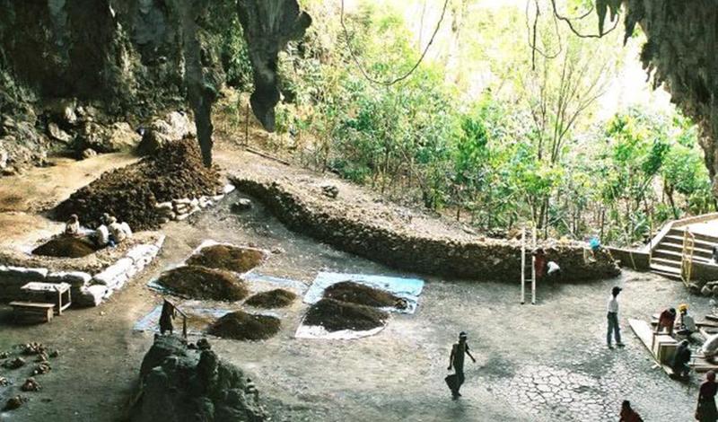 Мистическое племя хоббитов