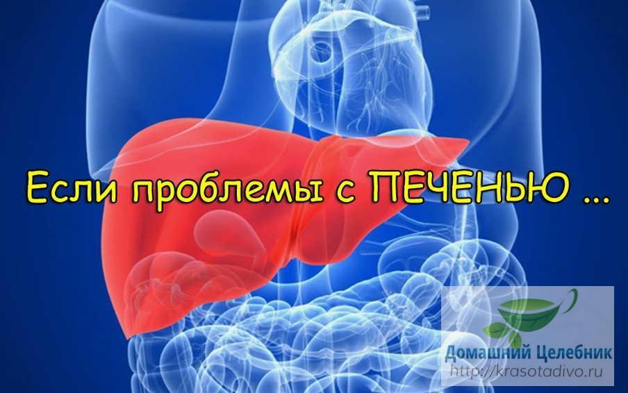 Типичные жалобы при заболеваниях печени: как больной орган «жалуется» нам