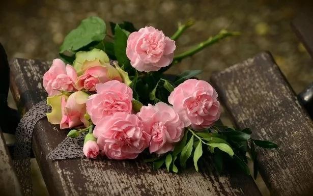 Как празднуют День Валентина в разных странах мира: интересные факты о традициях праздника