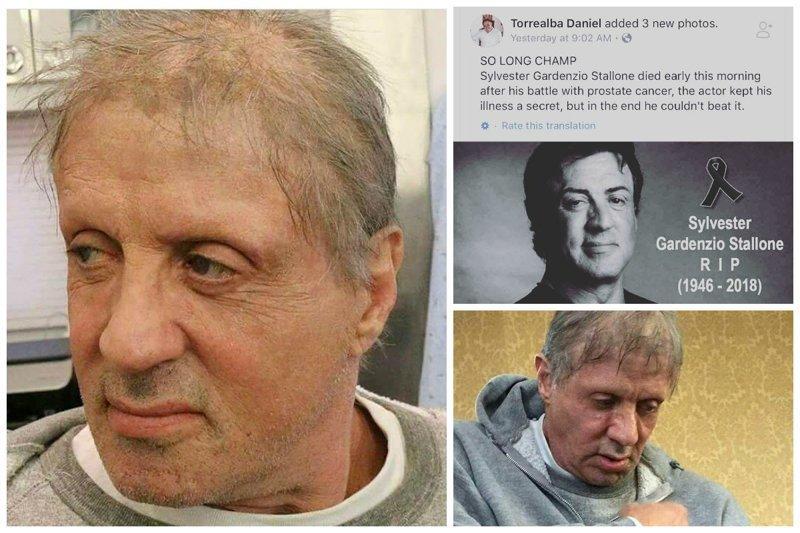 Похоронен, но все еще жив: Сталлоне опроверг слухи о своей смерти