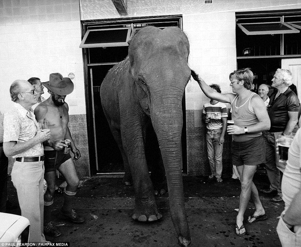 Девушки в бикини, свобода и безработица: как жила Австралия в 70-е