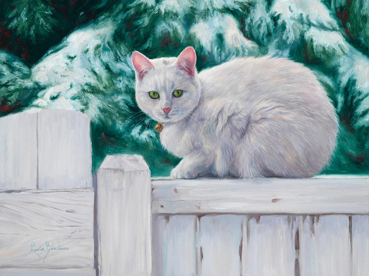Белый кот картинки рисунки
