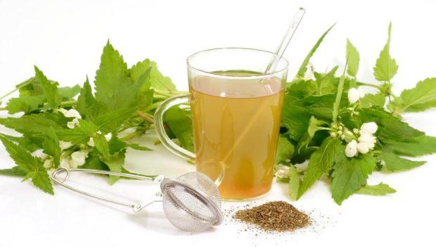 Лекарственные растения польза и вред