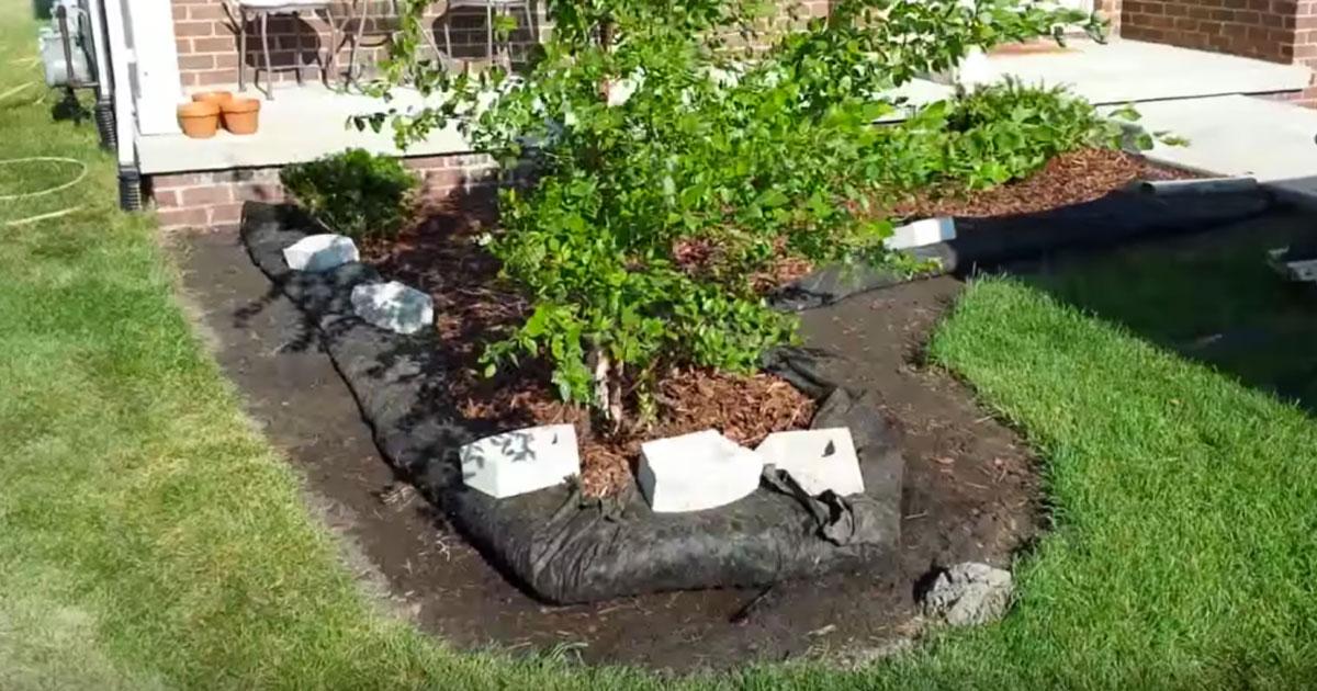 11 способов огородить грядки…