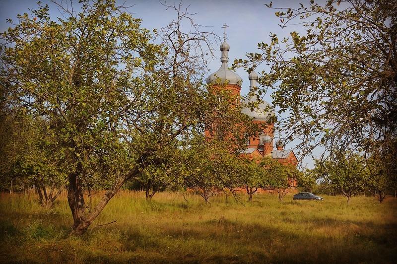Село Чуровичи. Чем живёт Брянская область