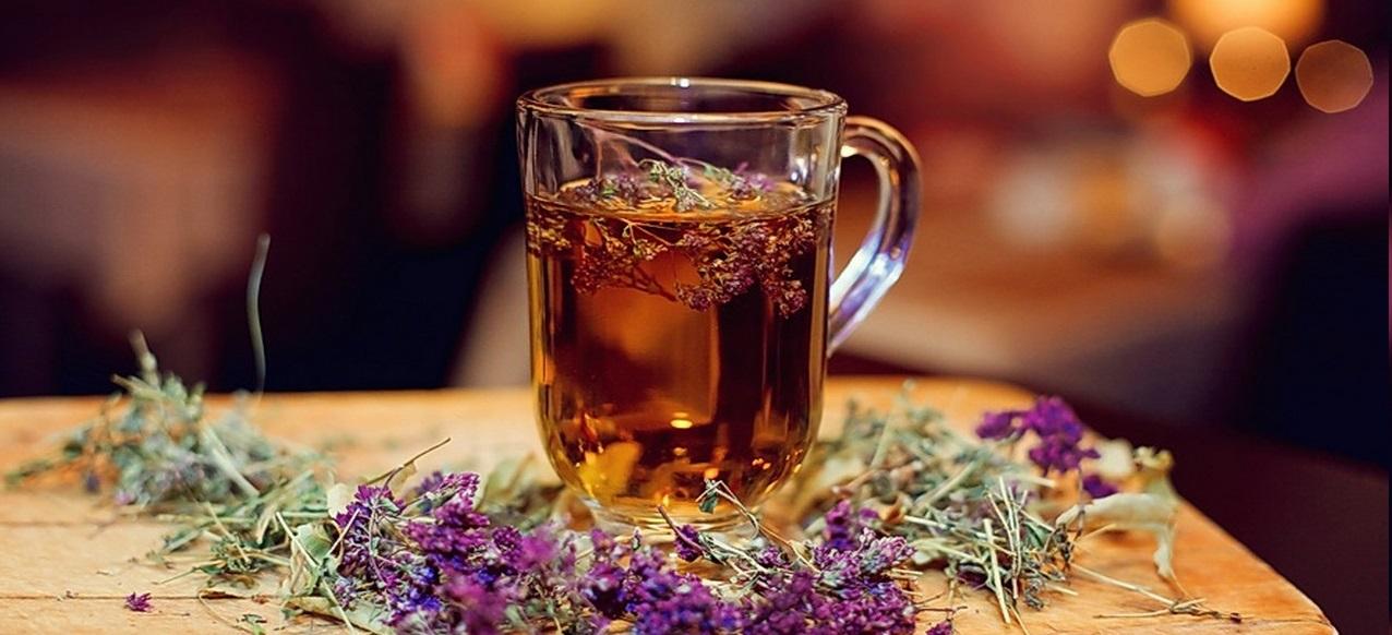 Чай с чабрецом: сбор сырья и рецепты приготовления напитка