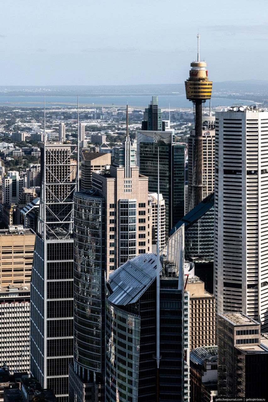 Chifley Tower — самый высокий небоскрёб в Сиднее