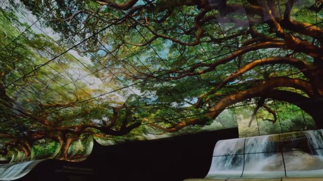 Инсталляция из гибких 4K-панелей и 8K OLED-телевизор от LG