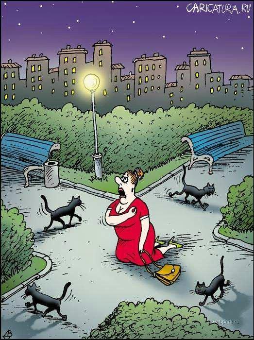 Для открытки, картинки на тему жизни с юмором