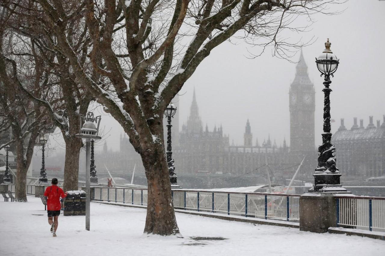 фото снег в лондоне процессе питания они
