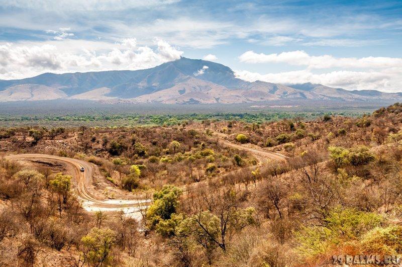 Эфиопия Земли, интересное, история, колонии, политика, россия, страны, упущенные