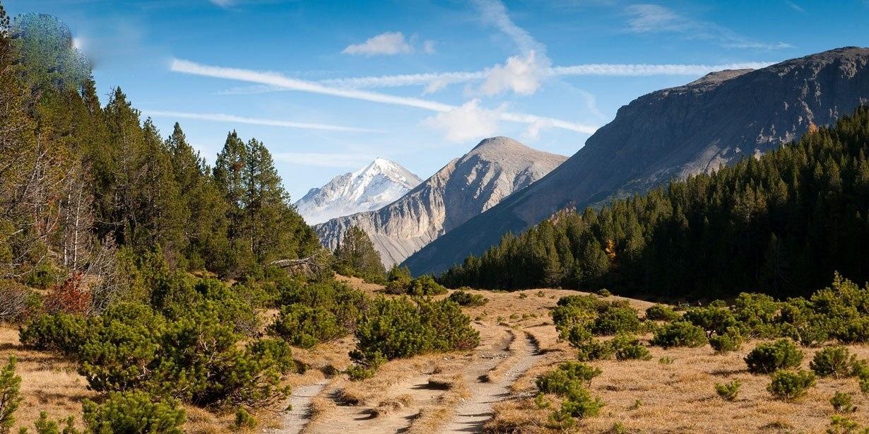 Швейцарский национальный парк.