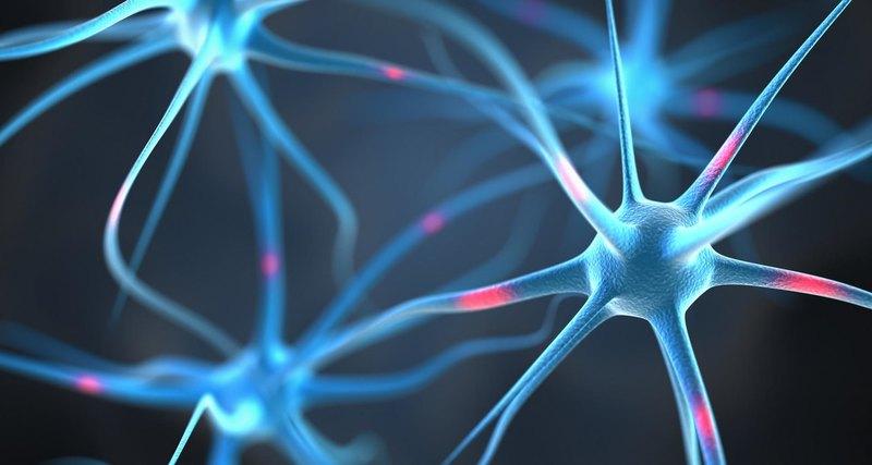 5 действий, которые помогают нервным клеткам восстанавливаться